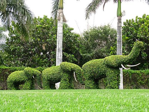 garden elephants
