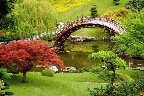 garden springtime