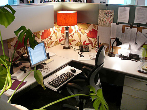 Decorating Your Cubicle Endearing With Office Cubicle Decorating Ideas Picture