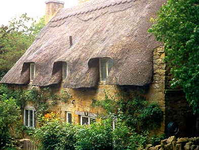 A Thatched Cottage in the Cotswolds